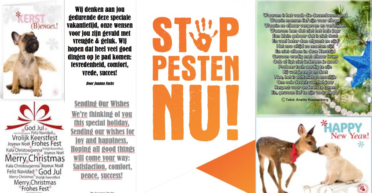 artikelen / nieuws   page 20   stop pesten nu
